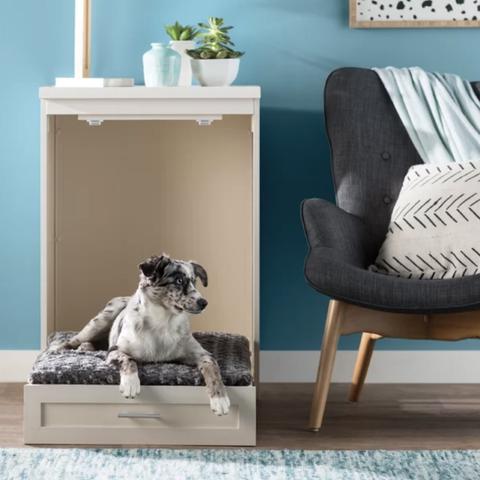Furniture, Dog, Canidae, Table, Room, Coffee table, Living room, Companion dog, Dog breed, Interior design,