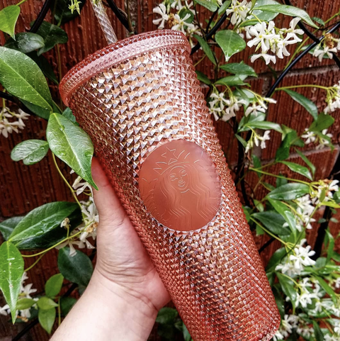 Hand, Plant, Fashion accessory, Nepenthes,