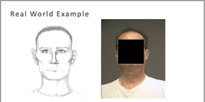 sketches and facial recognition