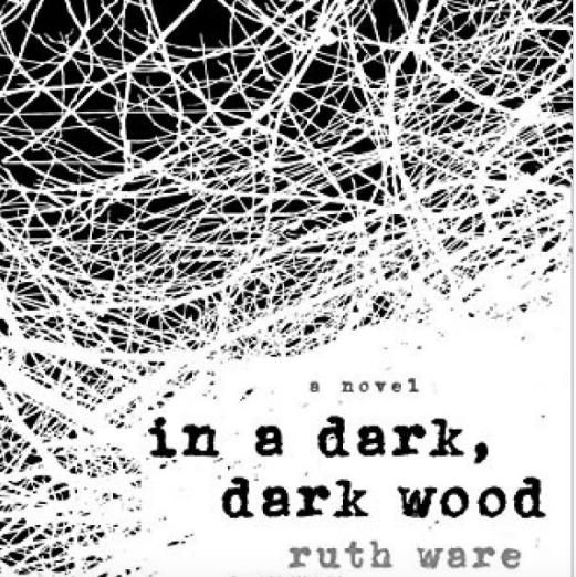 best thriller books - In a Dark, Dark Wood