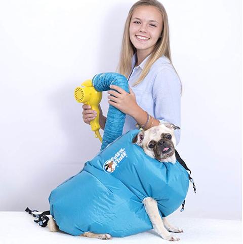 Blue, Turquoise, Canidae, Dog, Yellow, Sitting, Companion dog, Photography, Child, Smile,