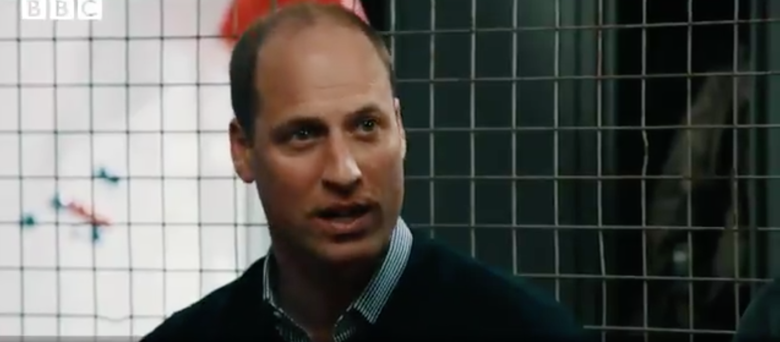"""Prince William Says Losing Princess Diana Was """"a Pain Like No Other"""""""
