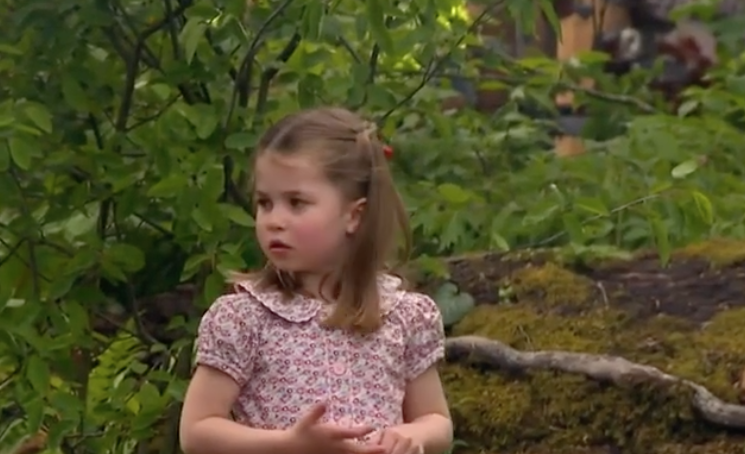 Prince William's Comment to Princess Charlotte in a Rare Royal Family Video Is Stumping the Internet