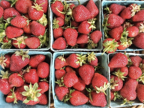 Natural foods, Strawberry, Strawberries, Local food, Fruit, Food, Plant, Superfood, Berry, Frutti di bosco,