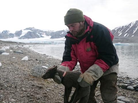 Wilderness, Mountain, Adventure, Ice, Recreation, Winter, Snow, Mountaineering, Fell, Wildlife biologist,