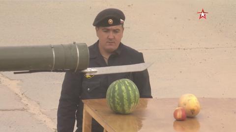 Watermelon, Citrullus, Cucumber, gourd, and melon family, Melon, Fruit, Plant, Cucumis, Squash, Food, Cucurbita,