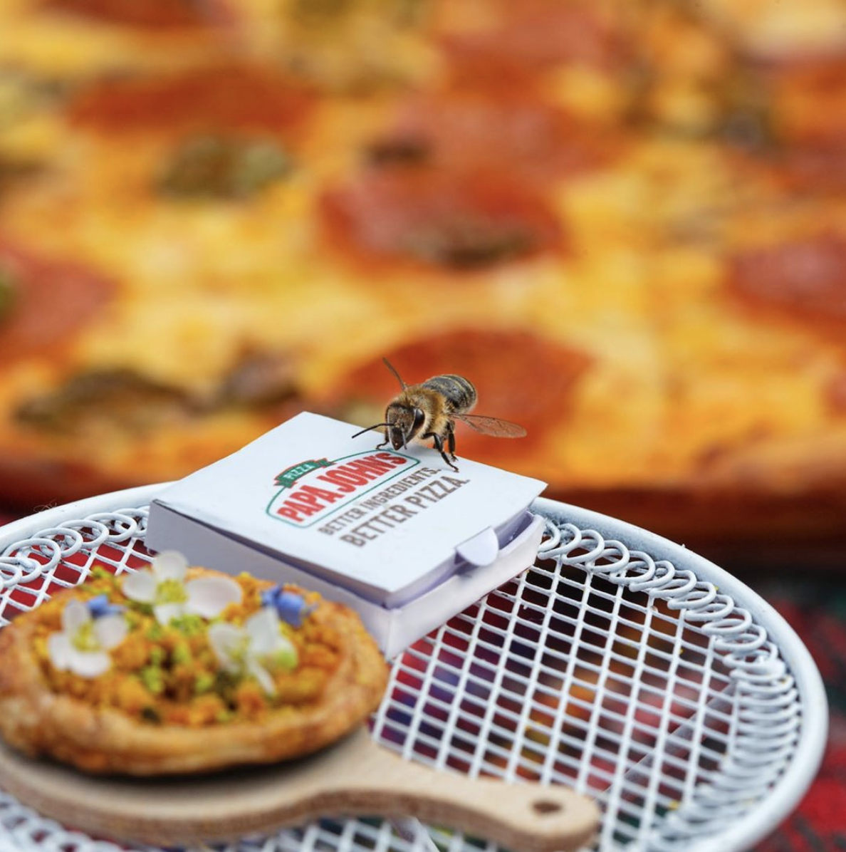 Papa John's Has Made The World's First Pizza That Is Exclusively For Bees