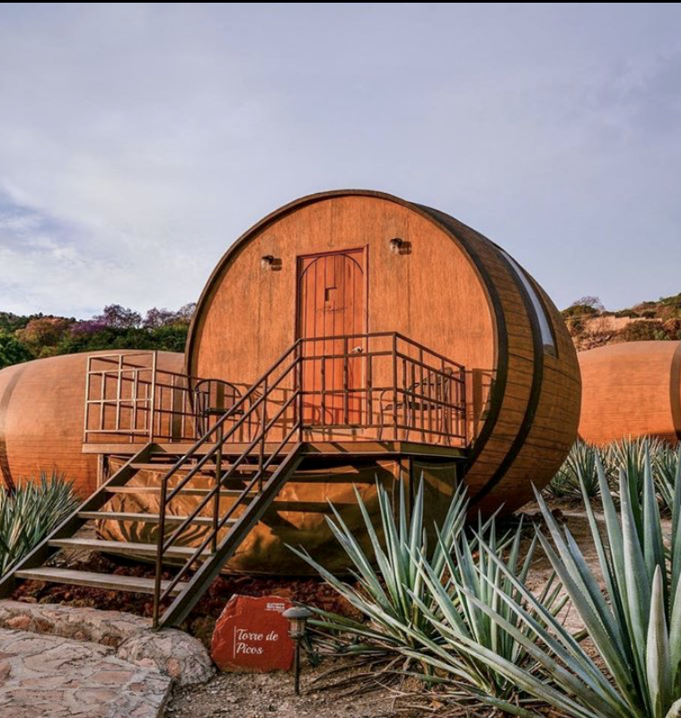 This Six-Day Tequila Tour Is Entirely Curated By An 'Agave Whisperer'
