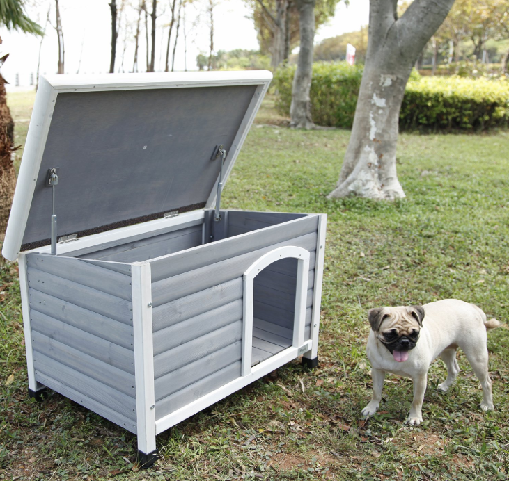 10 Best Insulated Dog Houses to Keep Your Pet Cozy in Chilly Weather