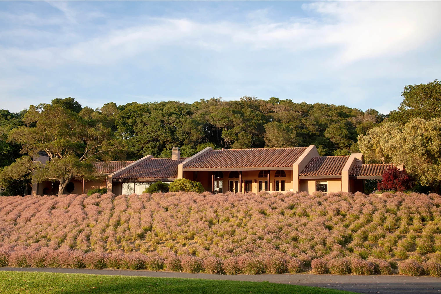 A Napa Valley Home Is on Sale For $18 Million, And It Comes With Its Own Vineyard and Equestrian Farm