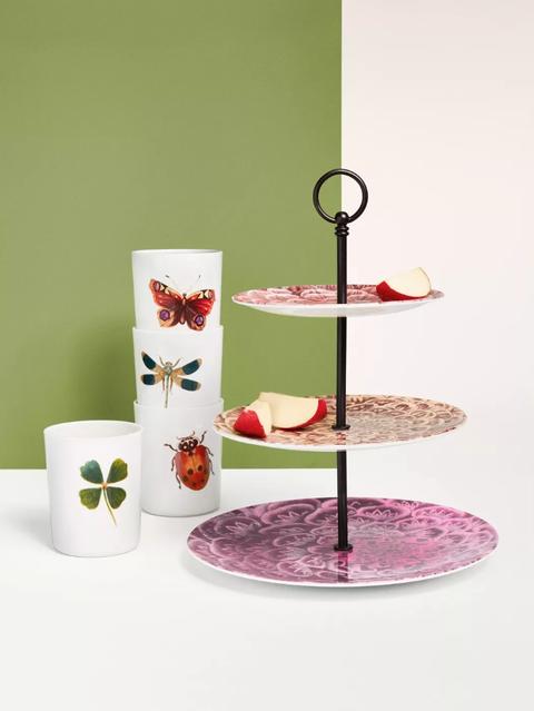 Shelf, Product, Table, Shelving, Furniture, Teacup, Serveware, Tableware, Interior design, Plant,