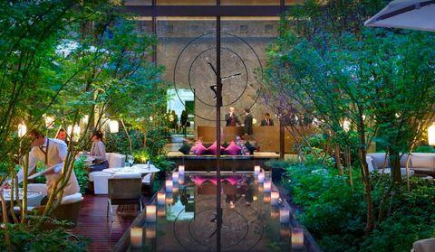 Lighting, Garden, Building, Backyard, Yard, Patio, Tree, Home, Courtyard, Leisure,