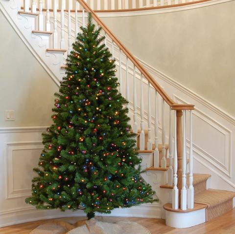 Christmas tree, Christmas decoration, Tree, oregon pine, Colorado spruce, Christmas ornament, Christmas, Home, Evergreen, Woody plant,