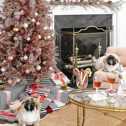 Shih tzu, Dog, Christmas tree, Canidae, Home, Companion dog, Room, Christmas decoration, Tibetan terrier, Liver,