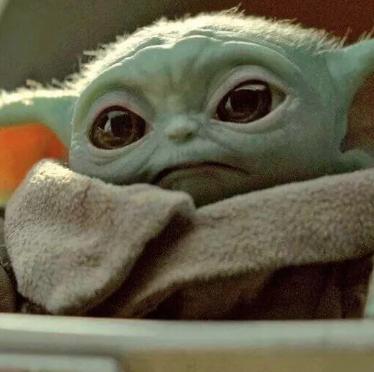 Yoda, Snout, Fictional character,