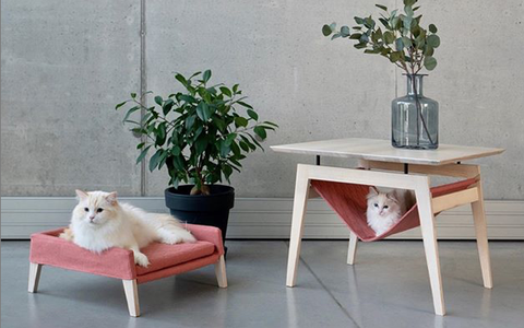 Furniture, White, Table, Coffee table, Room, Interior design, End table, Sofa tables, Desk, Floor,