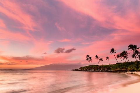 Небо, Природа, Послесвечение, Закат, Дерево, Восход, Пальма, Тропики, Море, Облако,