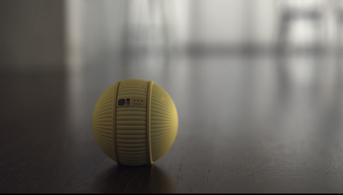 Ball, Yellow, Soccer ball, Ball, Sports equipment, Volleyball, Sport venue, Sports,