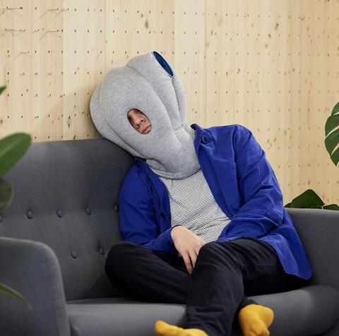 Blue, Hoodie, Green, Outerwear, Organism, Hood, Sitting, Plant, Furniture, Animation,