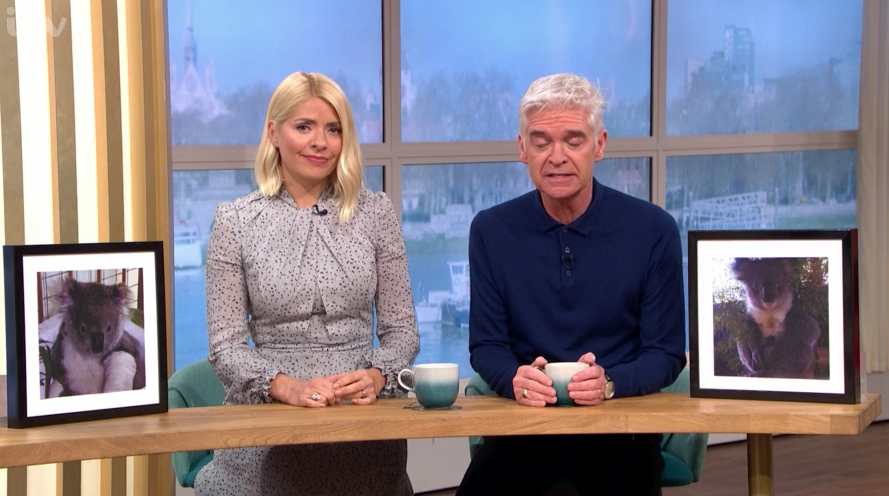 This Morning's Holly Willoughby and Phillip Schofield adopt koalas