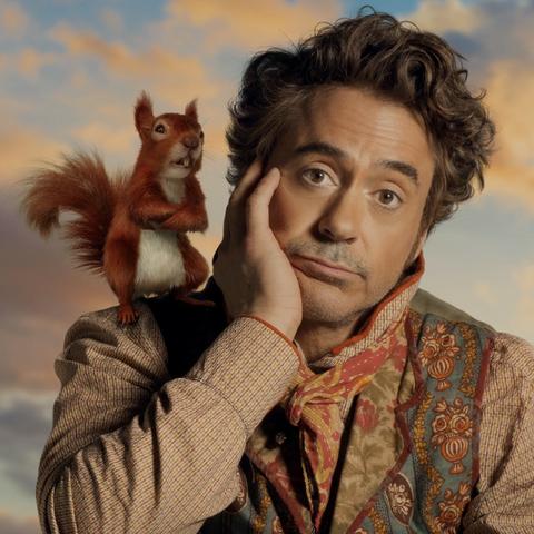 Squirrel, Fur, Photography, Companion dog, Fawn,