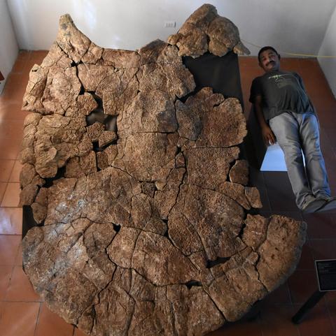 Rock, Geology, Igneous rock, Bedrock, Museum, Boulder, Tourist attraction, World,