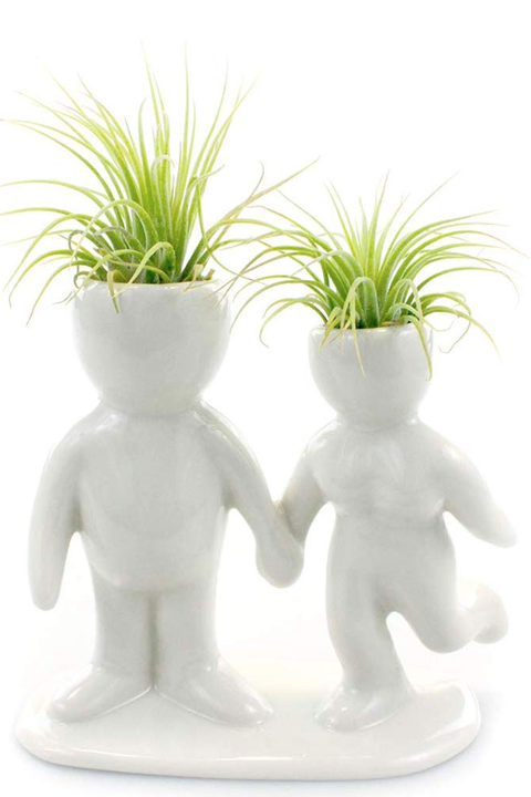 best air plant holders