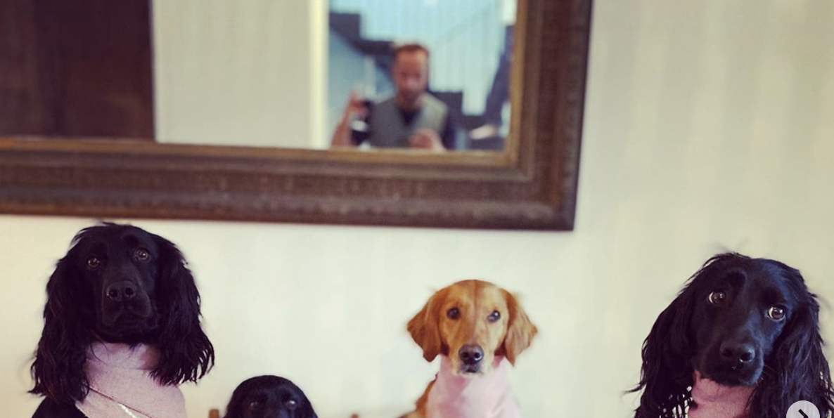 James Middleton Threw A Dinner Party For His Dogs