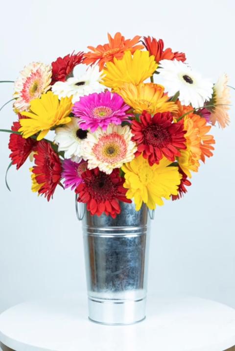 Flower, Bouquet, Cut flowers, Flower Arranging, Floristry, barberton daisy, Gerbera, Floral design, Plant, Flowerpot,