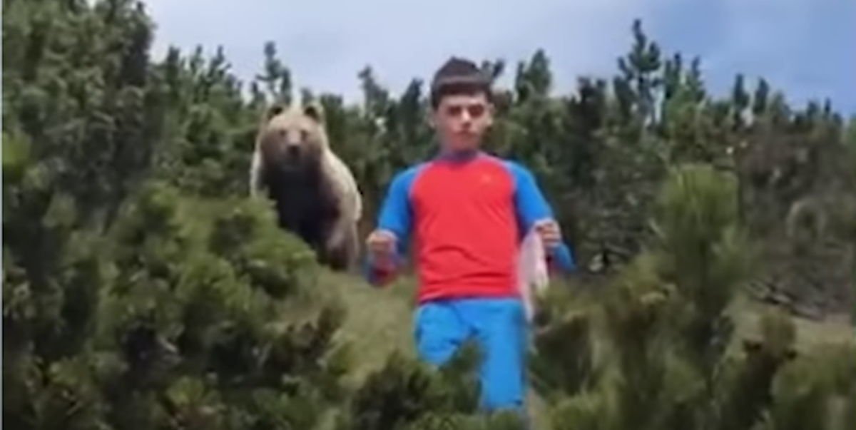 Watch This Brown Bear Follow a Young Boy Down a Mountain in Viral Video