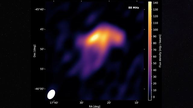 space jellyfish