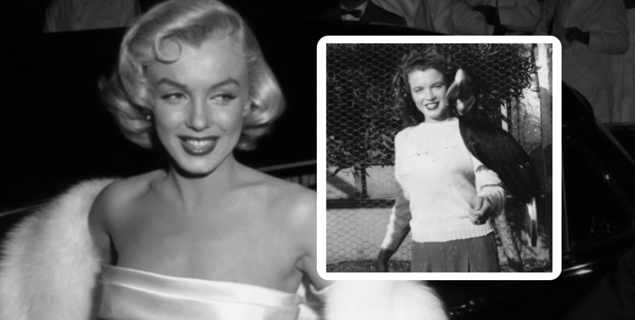 17 Photos of Old Hollywood Stars Before They Were Famous