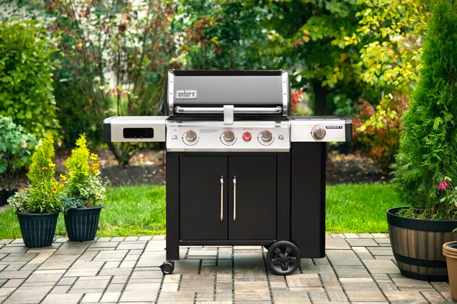weber smart barbecue bbq