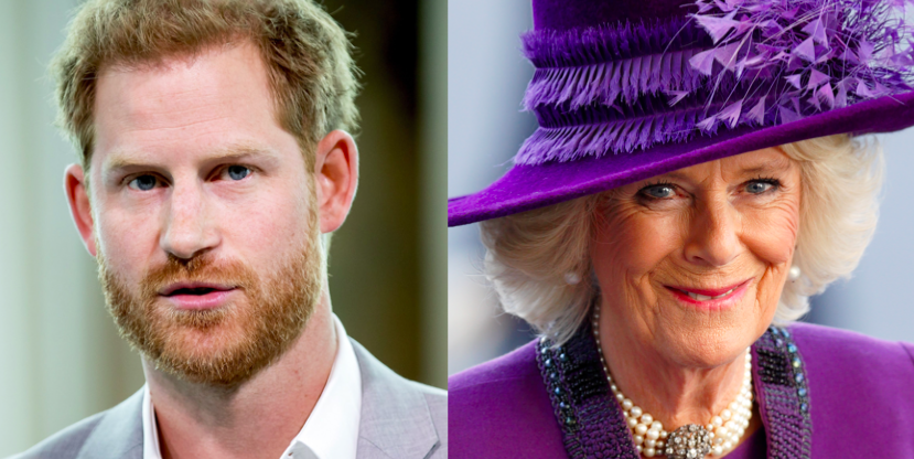 """The Royals Are """"Worried"""" Prince Harry Could Write About His Step-Mom, Duchess Camilla"""