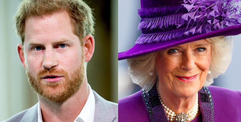 The Royals Are 'Worried' Prince Harry Could Write About His Stepmom, Duchess Camilla