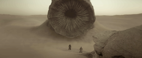 what is dune about