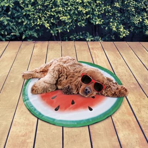 Watermelon dogcooling mat
