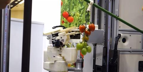 Juicer, Vegetable, Room, Small appliance, Machine, Plant, Vegetarian food, Food, Kitchen, Kitchen appliance,