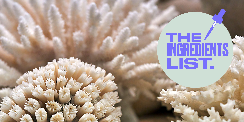 Sea Friendly SPF Sun CreamCoral