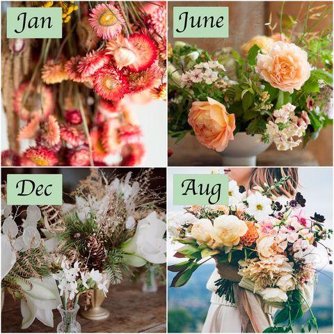 seasonal British flowers