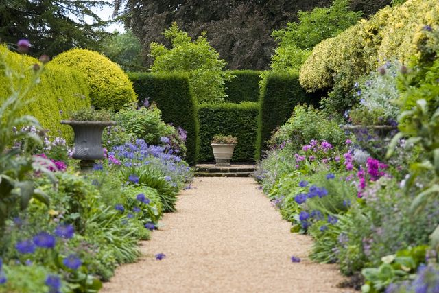 How to Create Privacy in Your Garden with Plants