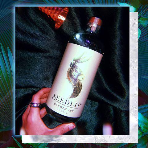 Seedlip drink review