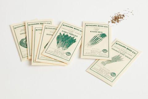 semillas para plantar hierbas aromáticas