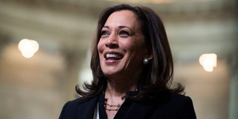 Who Is Kamala Harris S Husband Douglas Emhoff Douglas Emhoff Facts