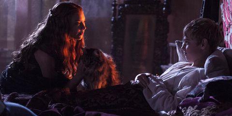 Ser pounce gato cersei juego tronos margaery tommen