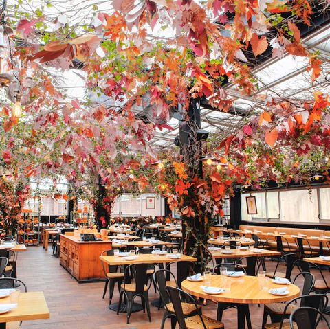 eataly nyc rooftop serra d'autunno