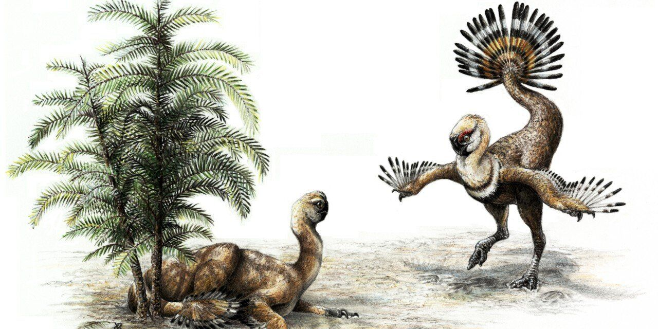 The Sexiest Dinosaurs Learned How to Fly First