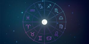 Signs of the zodiac in night sky