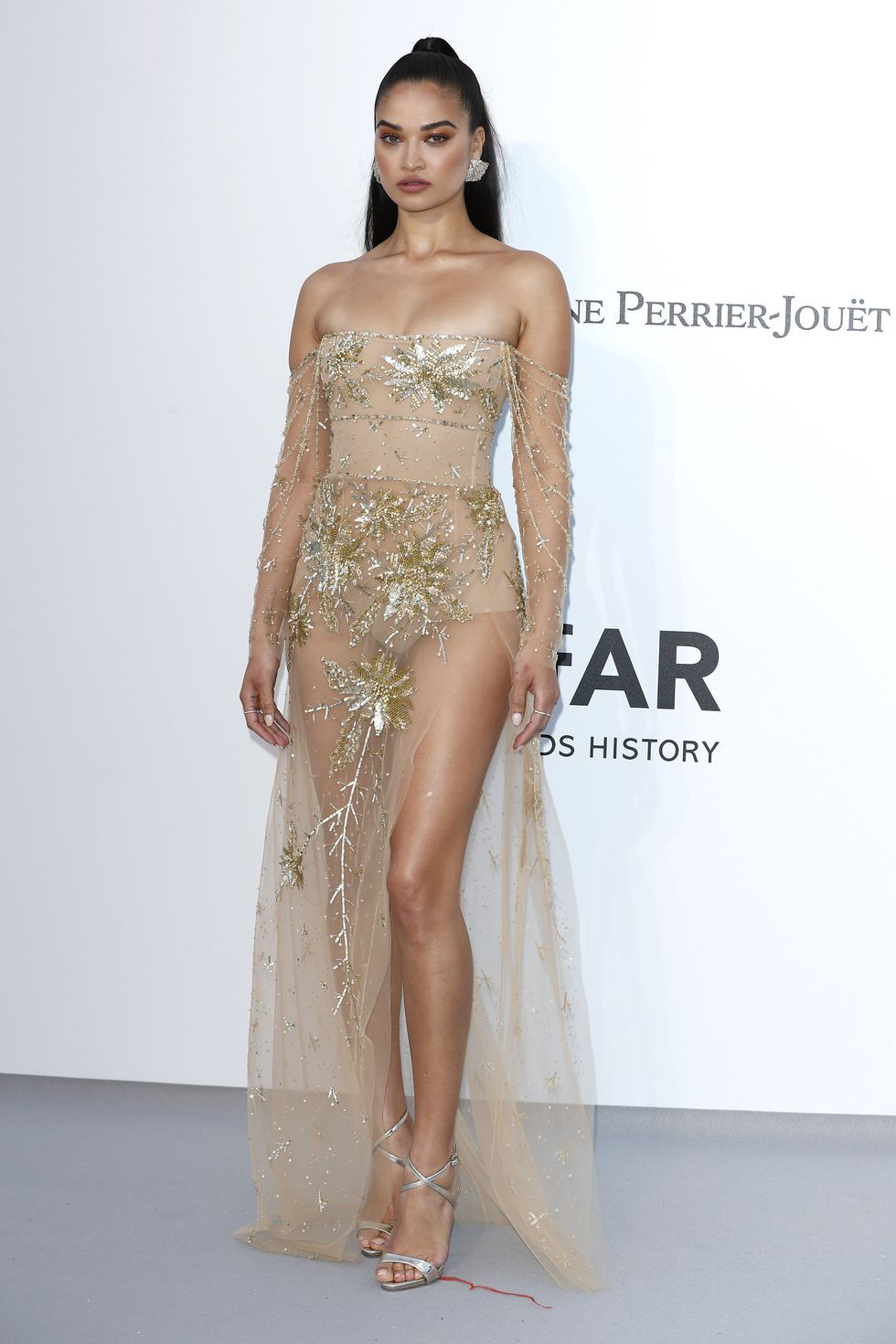 Shanina Shaik In an embellished sheer nude dress by Georges Hobeika.