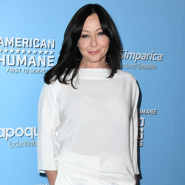 9th annual american humane hero dog awards   arrivals